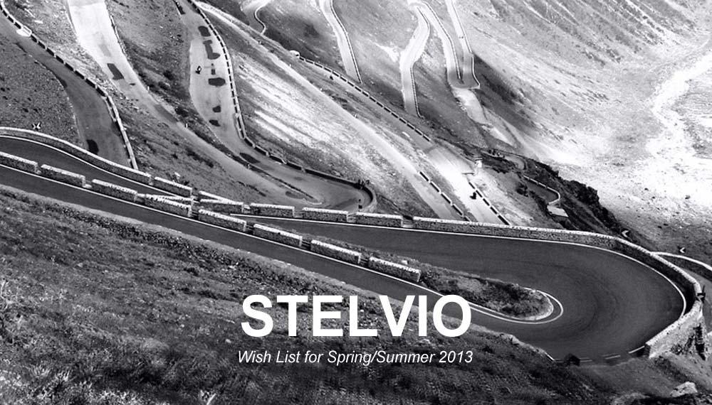 STELVIO Wish List